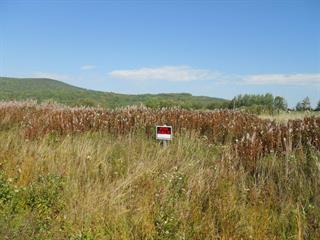 Terrain à vendre à Pointe-à-la-Croix, Gaspésie/Îles-de-la-Madeleine, 111, Chemin de la Baie-au-Chêne, 25771062 - Centris.ca