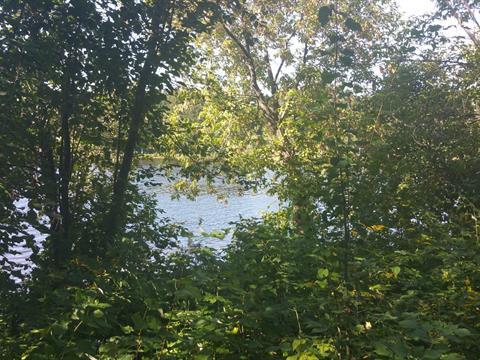 Terrain à vendre à Cowansville, Montérégie, Promenade du Lac, 24486629 - Centris.ca