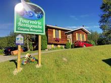 Maison à vendre à Matapédia, Gaspésie/Îles-de-la-Madeleine, 3, Rue des Saumons, 22769271 - Centris.ca