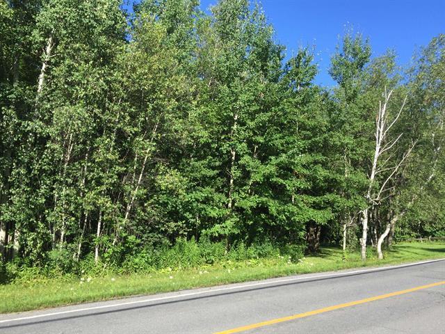Terrain à vendre à Drummondville, Centre-du-Québec, 675, Chemin  Hemming, 19791138 - Centris.ca