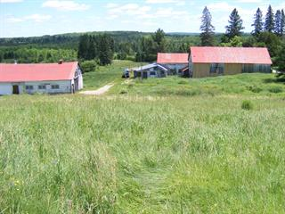 Hobby farm for sale in Nominingue, Laurentides, 1303, Chemin  Chapleau, 22644786 - Centris.ca