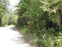 Terrain à vendre à Alleyn-et-Cawood, Outaouais, Chemin  Copeland-Evans, 10209208 - Centris.ca