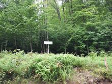 Terrain à vendre à Mont-Tremblant, Laurentides, Chemin  Joseph-Thibault, 15452249 - Centris