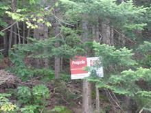 Terrain à vendre à Sainte-Marguerite-du-Lac-Masson, Laurentides, Rue du Lac-Piché, 19842605 - Centris.ca