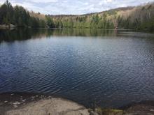 Terrain à vendre à Amherst, Laurentides, Chemin du Lac-Winnetou, 27185090 - Centris.ca