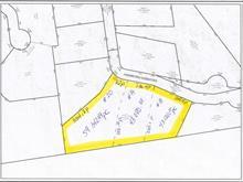 Terrain à vendre à Sainte-Anne-des-Lacs, Laurentides, Chemin des Clématites, 19739220 - Centris.ca