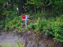 Terrain à vendre à Ferme-Neuve, Laurentides, Montée du Baskatong, 17993535 - Centris.ca