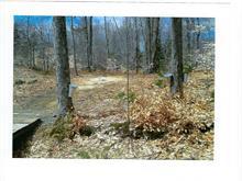 Lot for sale in Brownsburg-Chatham, Laurentides, Chemin  Janitens, 9541651 - Centris.ca