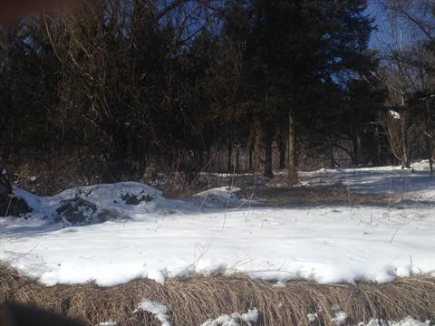 Lot for sale in Saint-Anicet, Montérégie, Chemin  Trépanier, 28666201 - Centris.ca