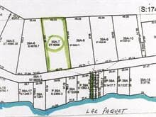 Terrain à vendre à Rivière-Rouge, Laurentides, Chemin du Lac-Paquet Ouest, 18781811 - Centris.ca