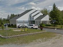 House for sale in Saint-Félix-de-Dalquier, Abitibi-Témiscamingue, 91, Rue de l'Aqueduc, 25384059 - Centris.ca