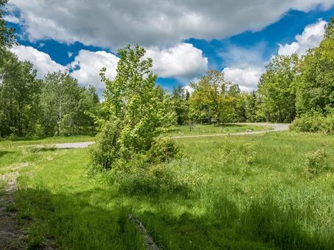 Terrain à vendre à Magog, Estrie, 7, Chemin  Viens, 24764954 - Centris.ca