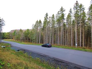Lot for sale in Saint-Sauveur, Laurentides, Chemin des Basques, 25331353 - Centris.ca