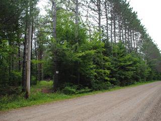 Lot for sale in Lac-des-Plages, Outaouais, Montée  Lafrance, 21461646 - Centris.ca