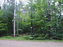Terrain à vendre à Lac-des-Plages, Outaouais, Montée  Lafrance, 21461646 - Centris.ca