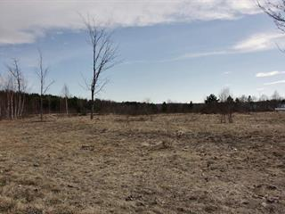 Lot for sale in Saint-Adelphe, Mauricie, Rue  Charest, 25480690 - Centris.ca