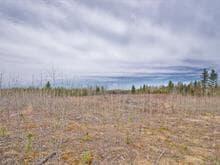 Terre à vendre à Saint-Eugène-de-Guigues, Abitibi-Témiscamingue, Chemin des 6e-et-7e-Rangs, 12374156 - Centris.ca