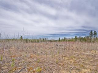 Land for sale in Saint-Eugène-de-Guigues, Abitibi-Témiscamingue, Chemin des 6e-et-7e-Rangs, 12374156 - Centris.ca