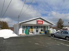 Bâtisse commerciale à vendre à Sainte-Aurélie, Chaudière-Appalaches, 166, Chemin des Bois-Francs, 22971988 - Centris.ca
