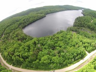 Lot for sale in Lac-des-Plages, Outaouais, Chemin du Lac-de-la-Carpe, 15782317 - Centris.ca