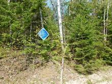 Terrain à vendre à Mont-Laurier, Laurentides, 225, Rue des Lupins, 12543492 - Centris.ca