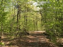 Lot for sale in Montebello, Outaouais, Chemin des Fauvettes, 28670883 - Centris.ca