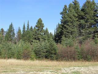 Terrain à vendre à Saint-Charles-de-Bourget, Saguenay/Lac-Saint-Jean, 37, Chemin du Boisé, 10554453 - Centris.ca
