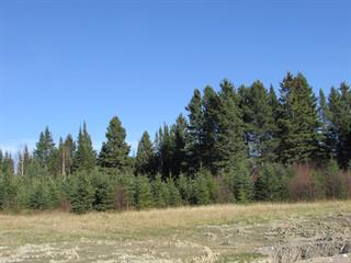 Lot for sale in Saint-Charles-de-Bourget, Saguenay/Lac-Saint-Jean, 37, Chemin du Boisé, 10554453 - Centris.ca