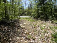 Terrain à vendre à Sainte-Anne-des-Lacs, Laurentides, Chemin  Filion, 11593602 - Centris.ca