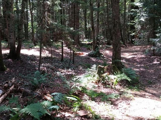 Lot for sale in Stukely-Sud, Estrie, Chemin  Beaumont, 19709604 - Centris.ca