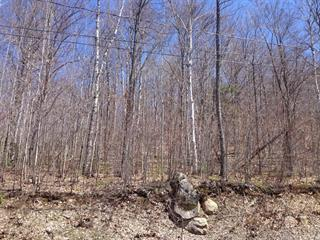 Lot for sale in Saint-Sauveur, Laurentides, Chemin de la Poutrelle, 21119284 - Centris.ca