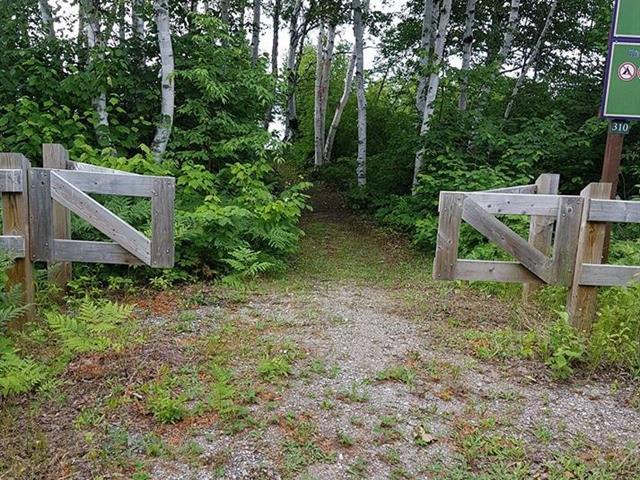 Terrain à vendre à Dolbeau-Mistassini, Saguenay/Lac-Saint-Jean, 1, Rue  Racine-sur-le-Lac, 21297686 - Centris.ca