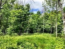 Terrain à vendre à Lac-des-Écorces, Laurentides, Rue  Théophile-Ouimet, 25018847 - Centris.ca