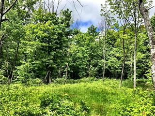 Lot for sale in Lac-des-Écorces, Laurentides, Rue  Théophile-Ouimet, 25018847 - Centris.ca
