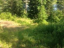 Terrain à vendre à Gracefield, Outaouais, Chemin du Bois-Franc, 15714812 - Centris.ca