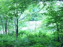 Terre à vendre à Bolton-Est, Estrie, Montée de Baker-Pond, 11872572 - Centris.ca