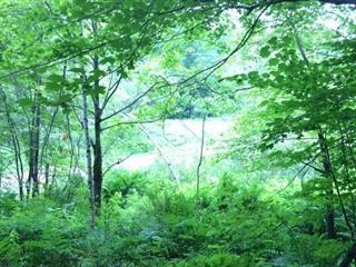 Land for sale in Bolton-Est, Estrie, Montée de Baker-Pond, 11872572 - Centris.ca