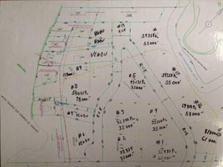 Terrain à vendre à Saint-Michel-des-Saints, Lanaudière, Chemin  Dulac, 25544647 - Centris.ca