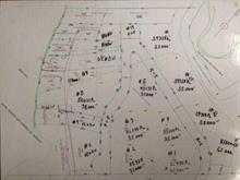 Terrain à vendre à Saint-Michel-des-Saints, Lanaudière, Chemin  Dulac, 9833885 - Centris
