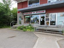 Business for sale in Les Rivières (Québec), Capitale-Nationale, 2827, boulevard  Masson, 21817927 - Centris.ca