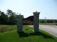 Lot for sale in Pontiac, Outaouais, 2, Chemin  Asaret, 26000713 - Centris.ca