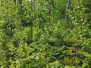 Lot for sale in Saint-Henri-de-Taillon, Saguenay/Lac-Saint-Jean, 125, Route du 6e Rang, 24921962 - Centris.ca