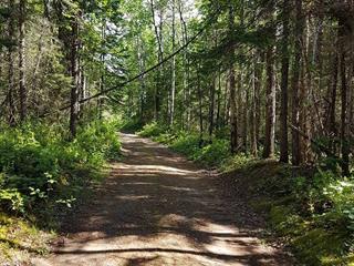 Terrain à vendre à Saint-Henri-de-Taillon, Saguenay/Lac-Saint-Jean, 147, Route du 6e Rang, 18301641 - Centris.ca