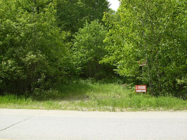 Lot for sale in Mont-Laurier, Laurentides, Montée des Pins-Rouges, 19875394 - Centris.ca