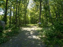 Terrain à vendre à Lac-Drolet, Estrie, Chemin  Gosselin, 20165042 - Centris.ca