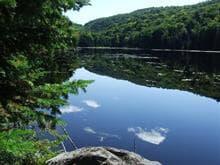 Terre à vendre à Montcalm, Laurentides, Chemin du Lac-Richer Sud, 18029783 - Centris.ca
