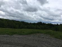 Lot for sale in Cleveland, Estrie, Chemin  Brown, 25459913 - Centris.ca