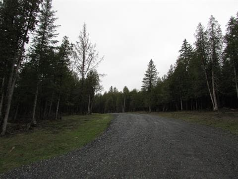 Lot for sale in Hatley - Municipalité, Estrie, Chemin  Abel-Montminy, 22181355 - Centris