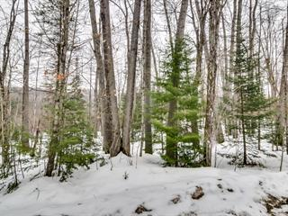 Lot for sale in Val-des-Monts, Outaouais, 459, Chemin de la Colonie, 15576623 - Centris.ca
