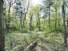 Lot for sale in Wentworth-Nord, Laurentides, Chemin du Lac-Rond, 27058682 - Centris.ca